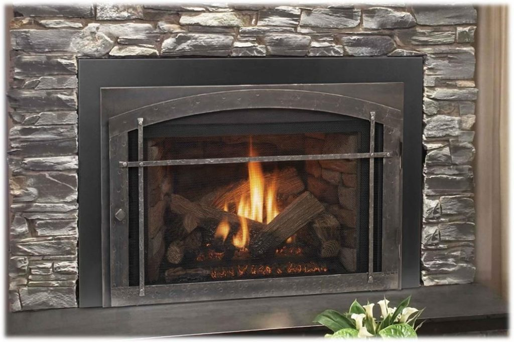 Napoleon traditional epi3 cast iron epa wood burning for Modern wood burning insert